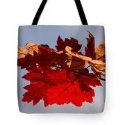 Canadian Maple Leaves In The Fall Tote Bag