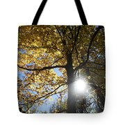 Canadian Maple Tote Bag