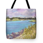 Canal Beach Tote Bag