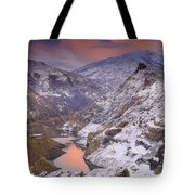 Canales Tote Bag