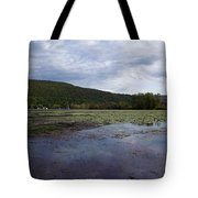 Canandaigua Lake Panorama Tote Bag