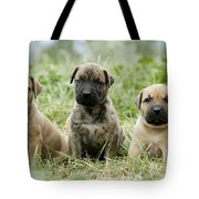 Canary Dog Puppies Tote Bag