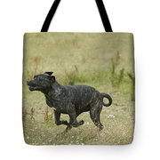 Canary Dog Running Tote Bag