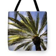 Canary Island Date Palm Tote Bag