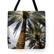 Canary Island Date Palms Tote Bag