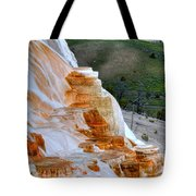 Canary Spring Tote Bag
