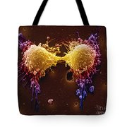 Cancer Cell Division Tote Bag by SPL and Photo Researchers
