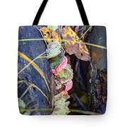 Candied Fungus Tote Bag