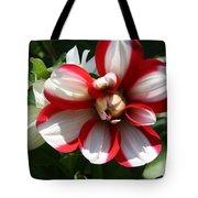 Candy Cane Dahlia Tote Bag