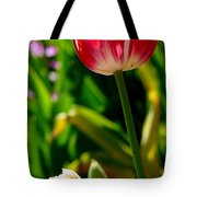 Candy Cane Tulip Tote Bag