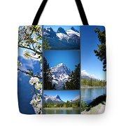 Canmore Alberta Tote Bag