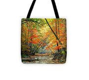 Canopy Of Color II Tote Bag