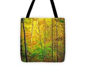 Canopy Of Color IIi Tote Bag
