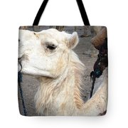Cant Wait For Hump Day Tote Bag