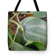 Cantaloupe  Tote Bag