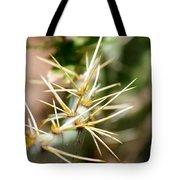 Canyon Cactus Tote Bag