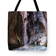 Canyon Color Tote Bag