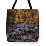 Canyon Color Rushing Waters Tote Bag
