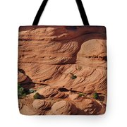 Canyon De Chelly - A Fascinating Geologic Story Tote Bag