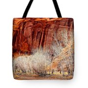 Canyon De Chelly - Spring II Tote Bag