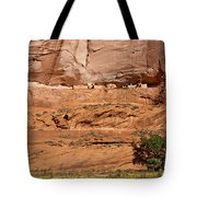 Canyon Dechelly Whitehouse Ruins Tote Bag