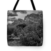 Canyon Del Oro No.48 Tote Bag