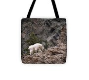 Canyon Goat 1 Tote Bag by Roger Snyder