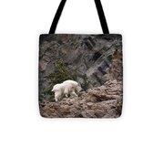 Canyon Goat 1 Tote Bag