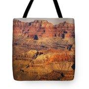 Canyon Grandeur 2 Tote Bag