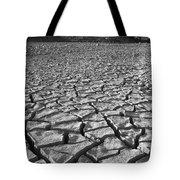 Canyon Lake Bed Tote Bag
