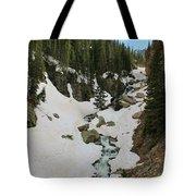 Canyon Scenery Tote Bag