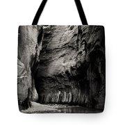 Canyon Trail 3 Tote Bag