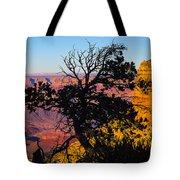 Canyon Tree Tote Bag