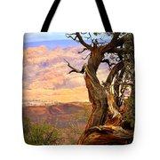Canyon Vista 1 Tote Bag