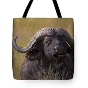 Cape Buffalo   #0574 Tote Bag