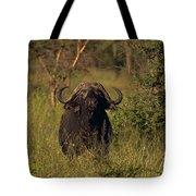 Cape Buffalo   #6851 Tote Bag