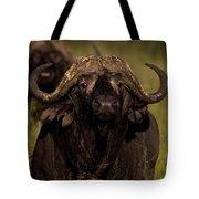 Cape Buffalo   #6883 Tote Bag
