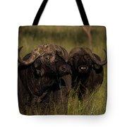 Cape Buffalo   #6884 Tote Bag