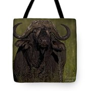 Cape Buffalo   #6885 Tote Bag