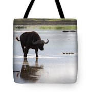 Cape Buffalo And Baby Eygptian Geese   #0375 Tote Bag