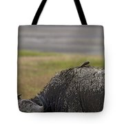 Cape Buffalo And Bird   #9873 Tote Bag