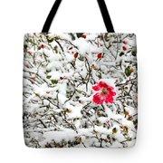 Cape Cod Beach Rose In Fresh Snow Tote Bag