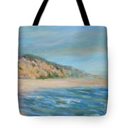 Cape Cod National Seashore Tote Bag