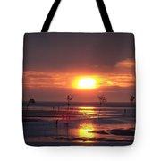 Cape Cod Sunset Tote Bag