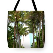 Cape Florida Walkway Tote Bag