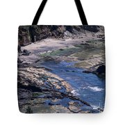 Cape Foulweather 1 Tote Bag