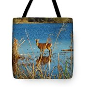 Cape Hatteras Deer In Pond 3 11/22 Tote Bag