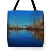 Cape Hatteras Lighthouse Water Reflection 2 3/01 Tote Bag