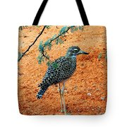 Cape Thick-knee Tote Bag