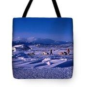 Capeevanshut-antarctica-g.punt-6 Tote Bag